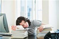 Có thể sa thải lao động ngủ trong giờ làm việc không?