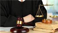 Luật quy định thế nào về sửa đổi, bổ sung đơn đăng ký nhãn hiệu?
