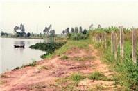 Tư vấn đất nông nghiệp không canh tác được do không có lối vào