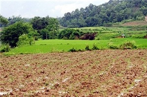 Bồi thường phần đất xây nhà lấn sang đất nông nghiệp khi thu hồi đất