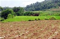 Lấy lại đất ruộng được xã thanh toán bằng đất thu hồi của dân