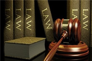 Vai trò của Chính phủ trong nhà nước pháp quyền