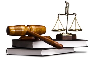Các cơ quan của pháp nhân