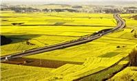 Điều kiện mua bán đất nông nghiệp